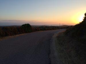 Portobello Dawn