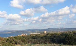 Sardinia Typical View